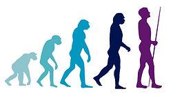 Evolution 01.jpg
