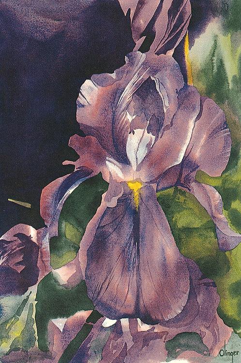 Tree Ornament - Iris