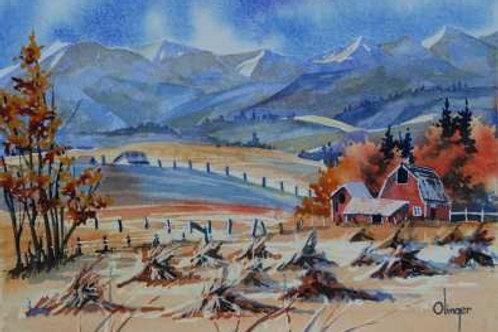 Stooks - Original Watercolor