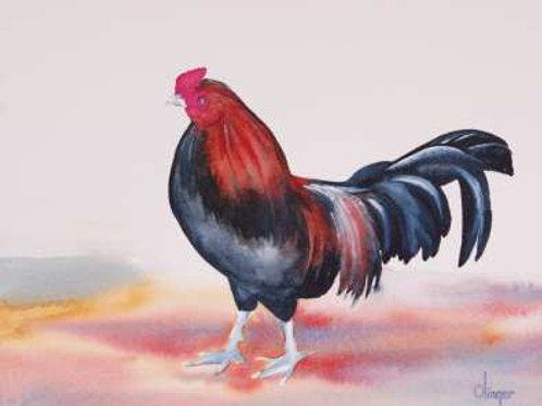 Cock II - Original Watercolor