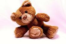 bear-678606_1280_250x167.jpg