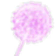 dandelion_head.png