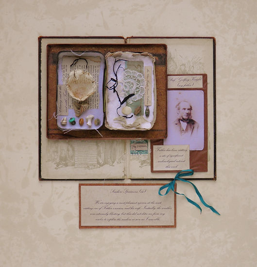 Seashore Specimens vii. 7. Unframed (240