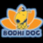 bodhi.png
