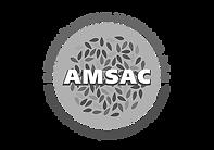 AMSAC.png