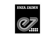 EZ.png