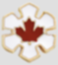Order of Canada lapel badge; Companion of the Order of Canada