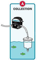 Waterra eDNA Filter - Collection.jpg