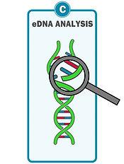 Waterra eDNA Filter - Preserve.jpg
