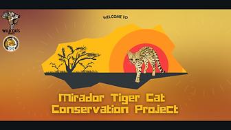 site mirador.png