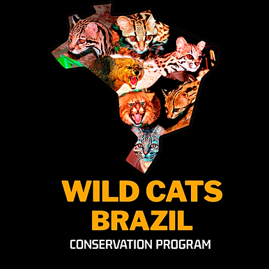 WILD CATS BRAZIL LOGObranco.png