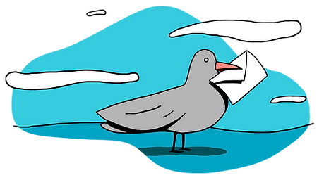 pigeon_contact.png
