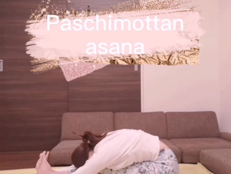 英語でヨガ 座位の前屈のポーズ Paschimottanasana