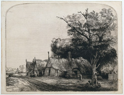 B217_Rembrandt.jpg
