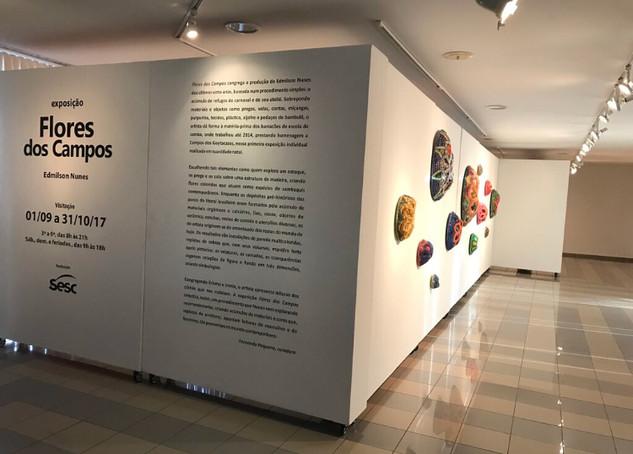 EXPO FLORES DOS CAMPOS | 2017
