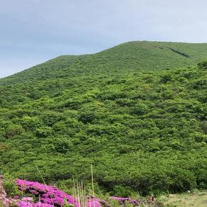 Kuju,Oita prefecture.
