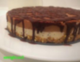 עוגת שוקולד וניל רואו פוד