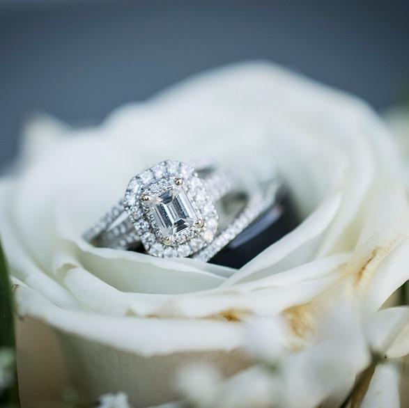 Andrea Fabian The Wedding Click