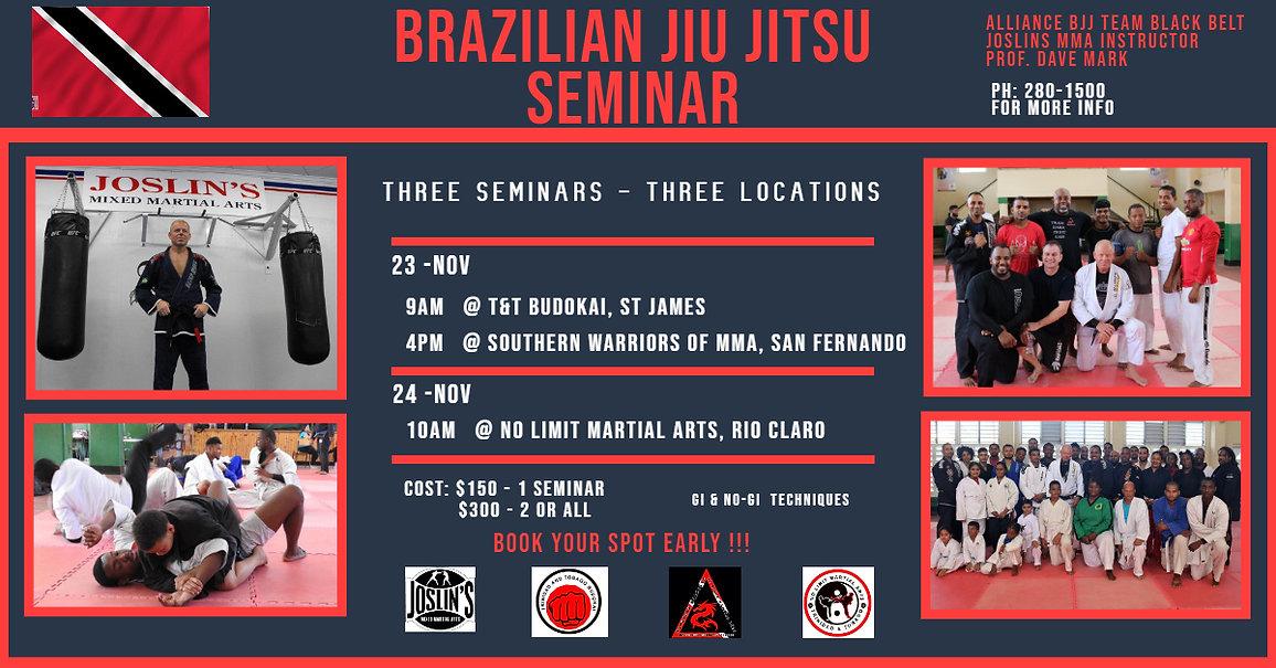 Jiu Jitsu overall seminar.jpg