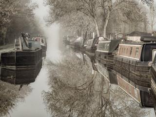 1st Still Morning by John Haddon
