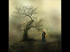 2012 'Mysterious' John Haddon
