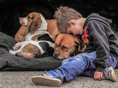 Boy's Best Friend_Chris Whitehouse