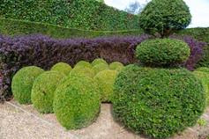 Garden shapes