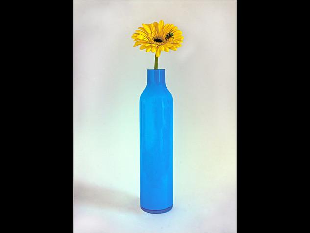 The Blue-Bottle