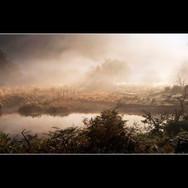 Mist along the river bank_Ken Brendon