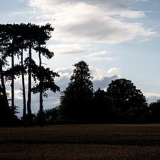 Lutterworth Skyline Louise Beech
