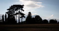 Lutterworth Skyline