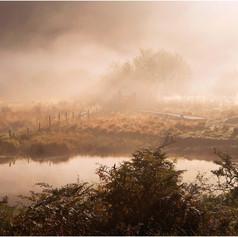 Mist Along The River Bank