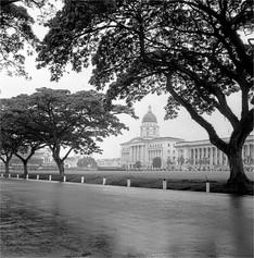 Singapore in the Rain 1952