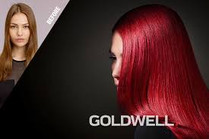 Before and After Goldwell