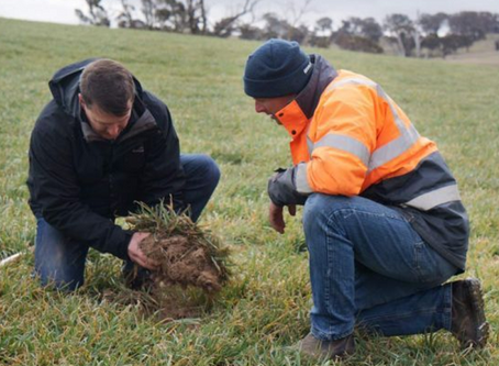 Biosolid use on farm is beneficial: Aussie farmer