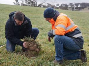 Agronomist Roger Crisp (L) and farmer Stuart Kelly (R) say using biosolids makes sense. (ABC news: Luke Wong)