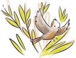 Sol's Bird