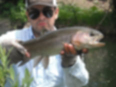 Fly fishing the Red River Can be most productive in the fall months. guide trips/guided fly fishing trips in northern new mexico. some of the best fly fishing New Mexico has to offer. Fly fishing at its best.