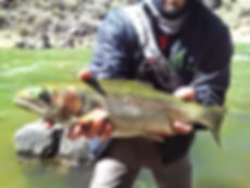 Fly Fishing the Rio Grande can be productive year round. Guide Trip, guided fly fishing trips in northern New Mexico book your fly fishing guide trip today!