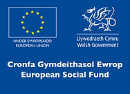 European Social Fund Wales Logo
