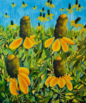 """Coneflowers Tangled Across The Prairie Grasslands"""