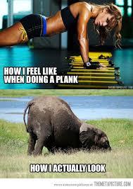 planks on planks