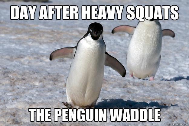 Squats Tuesday & Friday