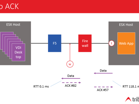 Palo Alto Packet Latency Case Study Using Workbench and Wireshark