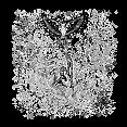 lendufur_mars_edit1 H.png