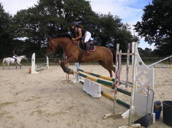portes ouvertes 18 poneys loisirs roxana