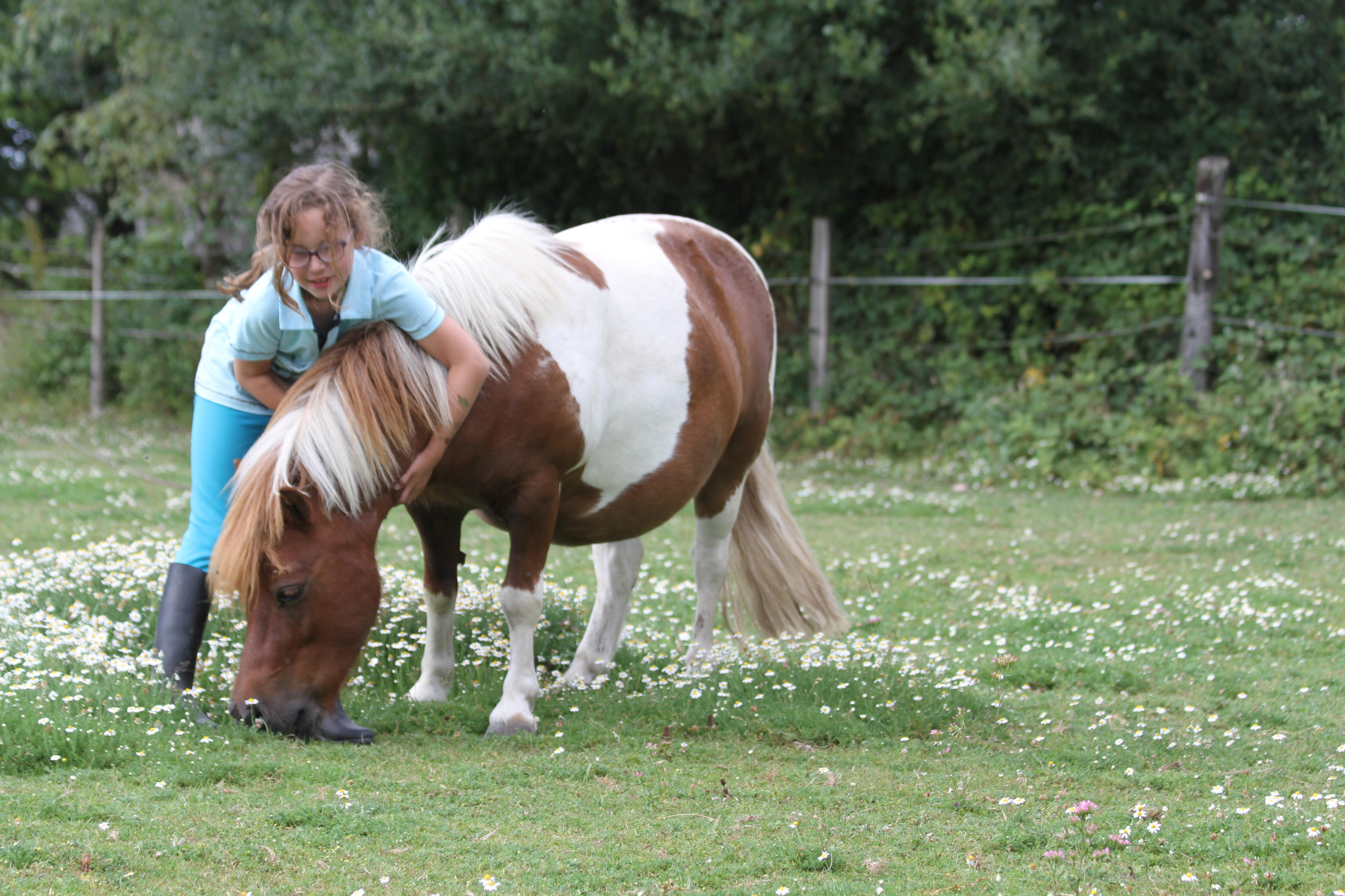 poneys loisirs Orgères 35