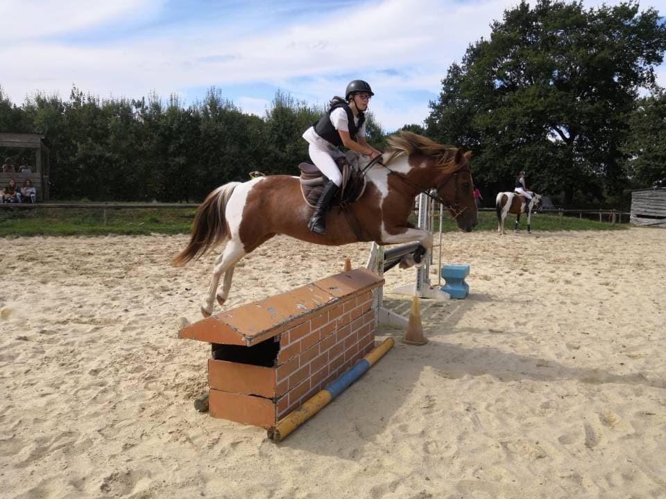 portes ouvertes poneys loisirs 18 Prince
