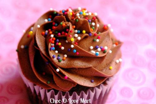 Chocolate Sprinkle Cupcake
