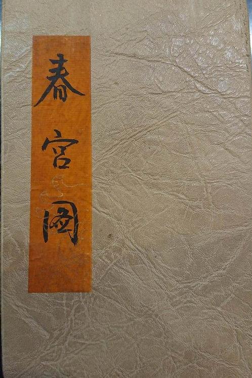 Chinese Erotic Painting (Books)